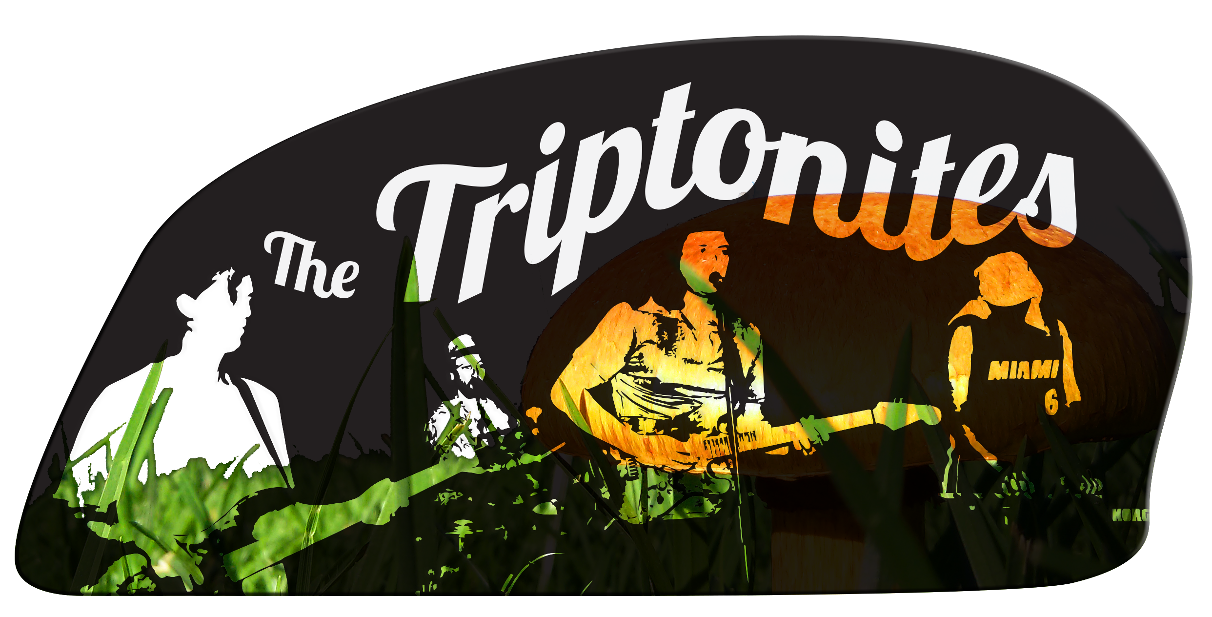 The Triptonites - 4 piece psychedelic funk